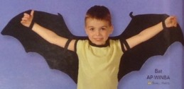 Bat Wings - Product Image