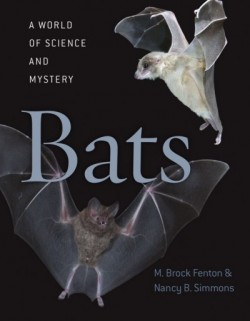 Bats A WORLD OF SCIENCE AND MYSTERY - Product Image