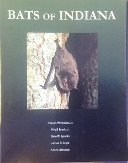 Bats Of Indiana - Product Image
