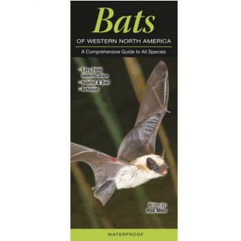 Bats Of Western North America - Product Image