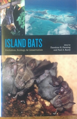 Island Bats - Special Order - Product Image