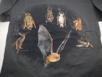 North American Bats Hanging Around Adult Shirt - Product Image