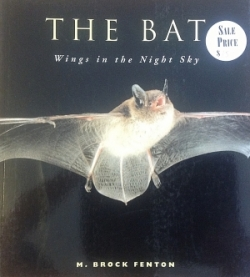 The Bat; Wings in the Night Sky - Product Image