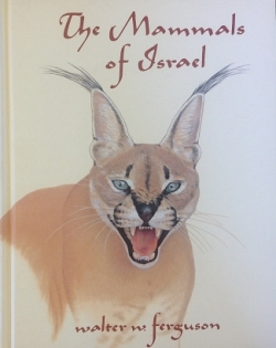 The Mammals of Israel - Product Image