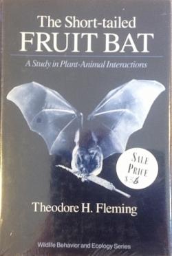 The Short-tailed Fruit Bat - Product Image