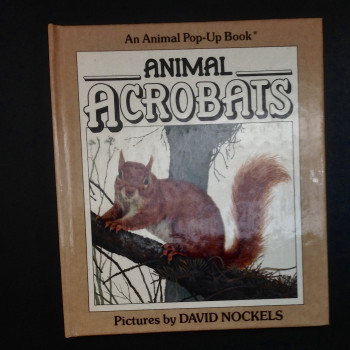 Animal Acrobats  - Product Image