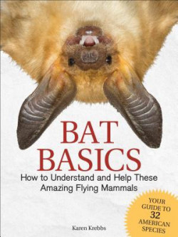 Bat Basics How to Understand and Help These Amazing Flying Mammals - Product Image