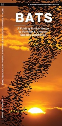 Bats A Folding Pocket Guide to Familiar & Unusual Species Worldwide - Product Image