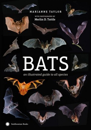 Bats: An Illustrated Guide to All Species (Photographed by Merlin Tuttle) - Product Image