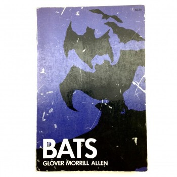 Bats By Glover Morrill Allen (Paperback) - Product Image