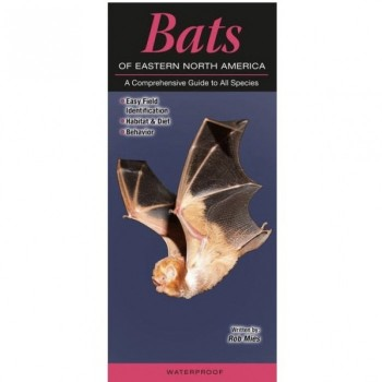 Bats Of Eastern North America - Product Image