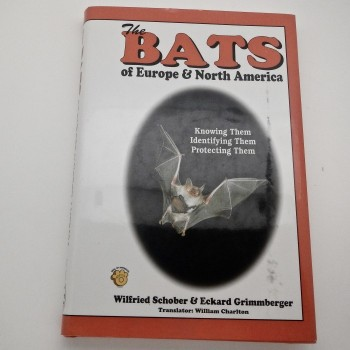 Bats Of Europe & North America - Product Image