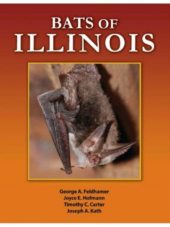 Bats Of Illinois - Product Image