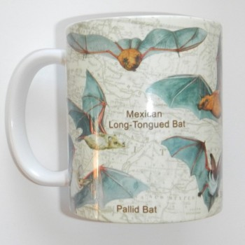 Bats Of North America Mug (beige background) - Product Image