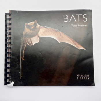 Bats, Tony Hutson Pre Pub Galley - Product Image
