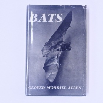 Bats By Glover Morrill Allen - Product Image