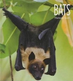 Bats by Melissa Gish - Product Image