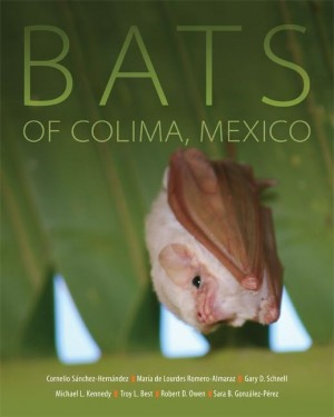 Bats of Colima, Mexico - Product Image