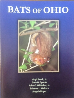 Bats of Ohio - Product Image