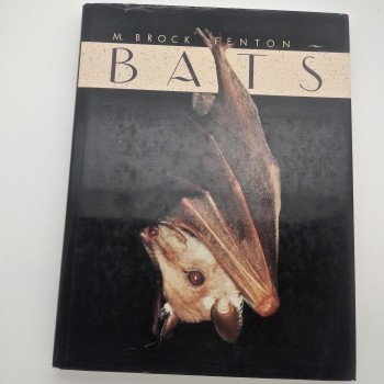 Bats - Product Image