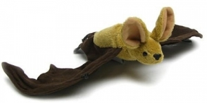 Big Eared Free Tail Bat - Product Image