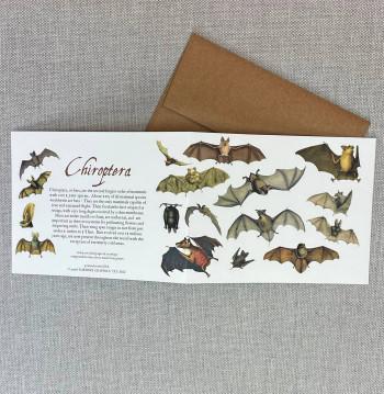 Chiroptera Individual Note Card - Product Image