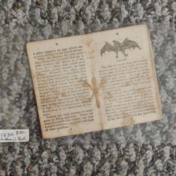 Cobb's Toys, Stories, 1836.  Includes bats - Product Image