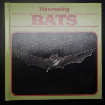 Discovering Bats - Product Image