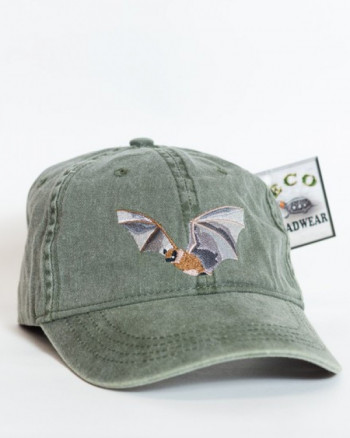 Embroidered Little Brown Bat Cap - Product Image