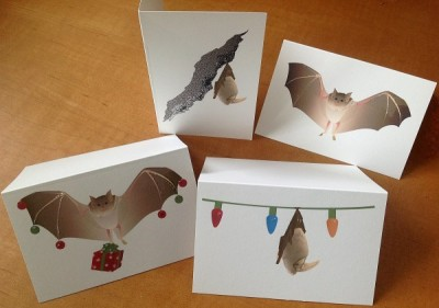 Gift Enclosure Bat Cards - Product Image