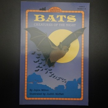 Bats Creatures Of The Night - Product Image