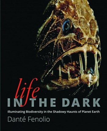 Life in the Dark; Illuminating Biodiversity in the Shadowy Haunts of Planet Earth - Product Image