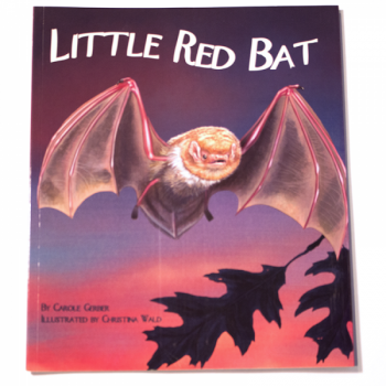 Little Red Bat - Product Image