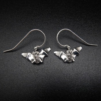 Myotis Silver Plate Earrings - Product Image