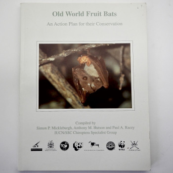 Old World Fruit Bats - Product Image