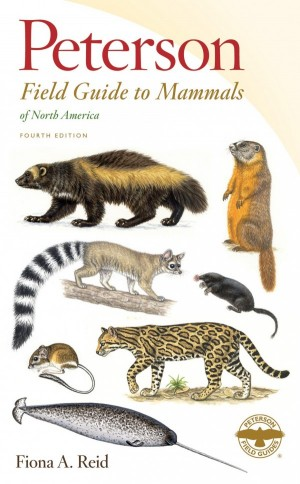 Peterson Field Guide to Mammals of North America - Product Image