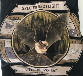 Species Spotlight Tee Shirt - Little Brown Bat (Updated Design) - Product Image