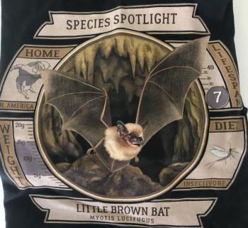 Species Spotlight Tee Shirt - Little Brown Bat (Updated Design) - Product Image