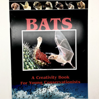 Bats A Creativity Book For Young Conservationists - Product Image