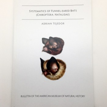 Systematics of funnel-eared bats (Chiroptera, Natalie)#353 - Product Image