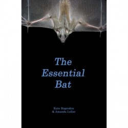 The Essential Bat - Product Image