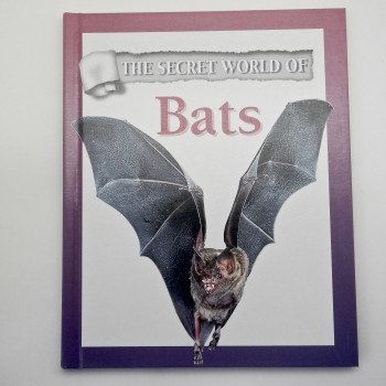 The Secret World of Bats - Product Image
